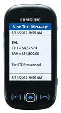 Heartland Bank Text Banking