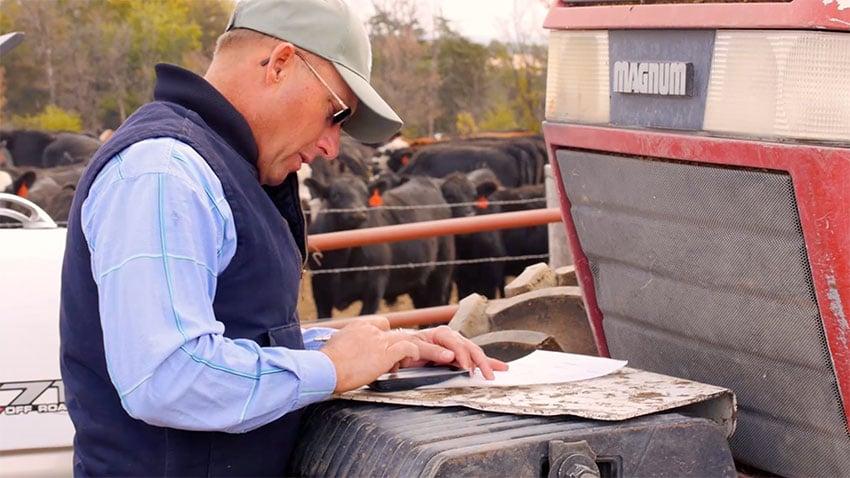 success-story-knapp-farms